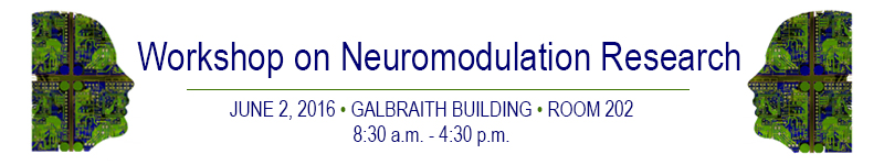 Banner workshop on neuromodulation research
