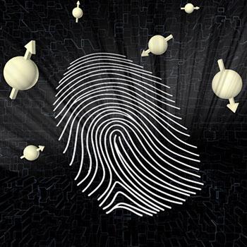 Graphical representation of a quantum fingerprint.